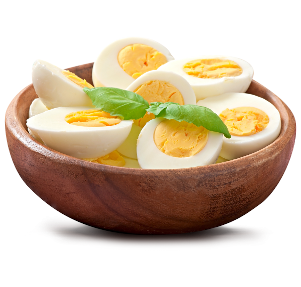1200x1147px_Dasoon-About-Egg-Img